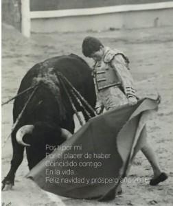 LUIS DE PAULOBA