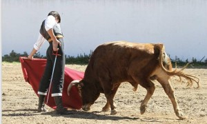 alvaro garcia toro campo 2