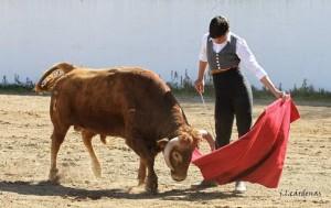 alvaro garcia toro campo 3