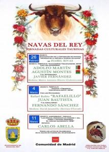 NAVAS DEL REY