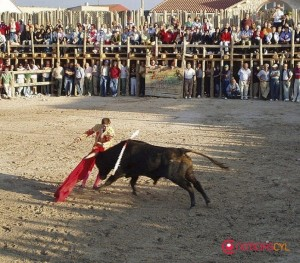 plaza-palos-montemayor